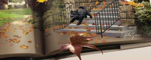 Library Lovers Mysteries by Jenn McKinlay