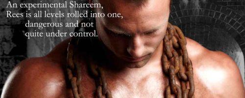 Tales of the Shareem by Allyson James Jennifer Ashley