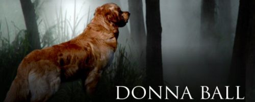 Raine Stockton Dog Mysteries by Donna Ball