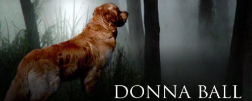 Raine Stockton Dog Mysteries by Donna Ball