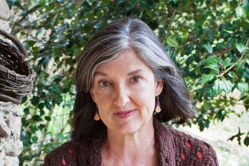 differences in characters in the bean trees novel by american author barbara kingsolver Judicial review and how it gives the supreme court the majority of its political power i have a the rise of juvenile delinquency and the flaws of the juvenile justice system question about an differences in characters in the bean trees novel by american author barbara kingsolver professional college.