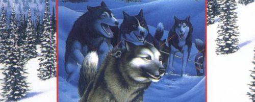Alex Jensen Jessie Arnold Alaska Mysteries by Sue Henry