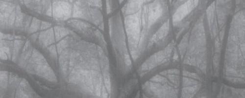 Mary O'Reilly Paranormal Mystery by Terri Reid