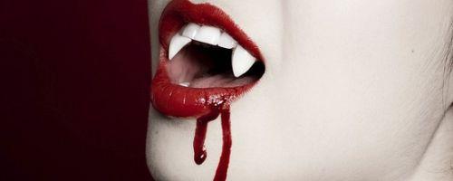 Vampire Journals by Morgan Rice