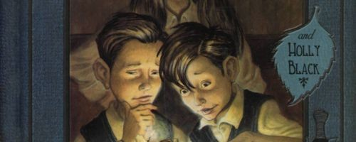 Spiderwick Chronicles by Tony DiTerlizzi Holly Black